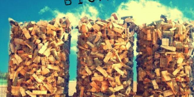Biocombustibles para coches a partir de biomasa