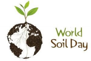 dia-mundial-suelo